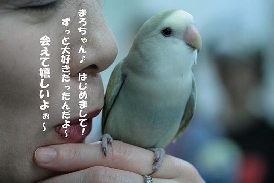IMG_9798.JPG